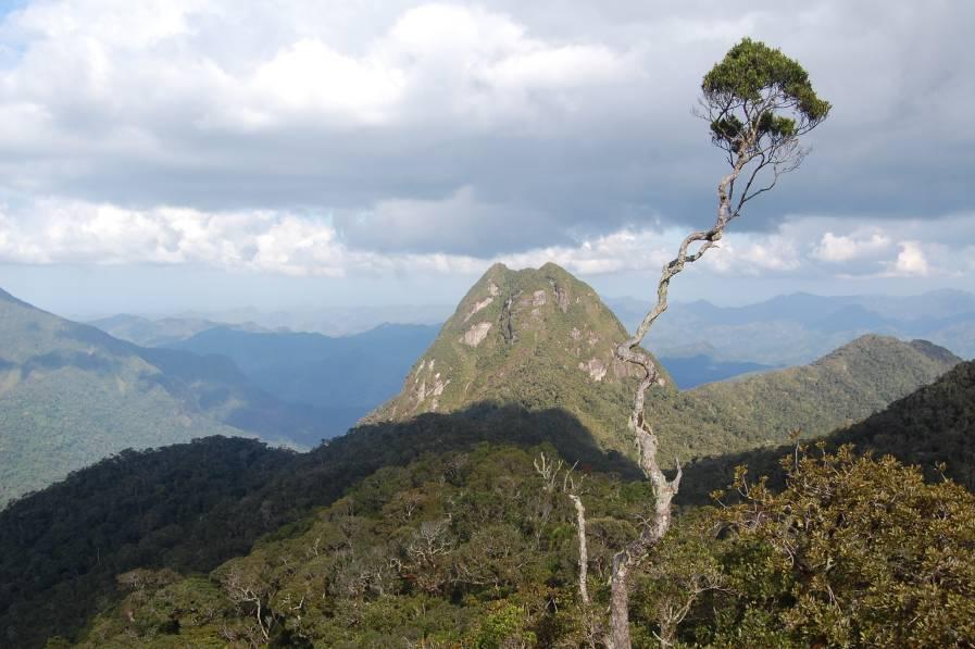 MNP : « La culture de la conservation est à instaurer »