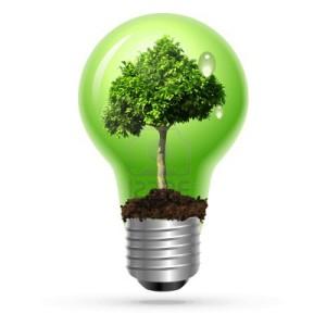12476833-arbre-vert-dans-la-lampe-sur-isole