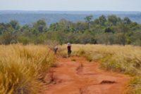 Madagascar: l'écotourisme peut-il être un levier de développement?