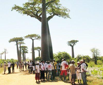 Madagascar : un soutien financier de la Banque mondiale pour le tourisme