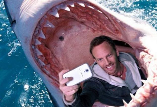You are currently viewing Les selfies avec les animaux sont très dangereux
