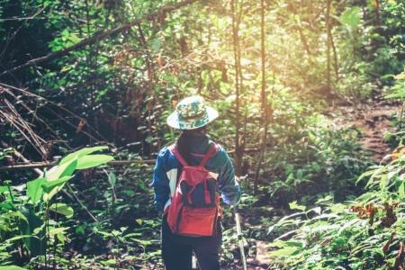 Monde d'après : Le tourisme est mort, vive l'écotourisme !