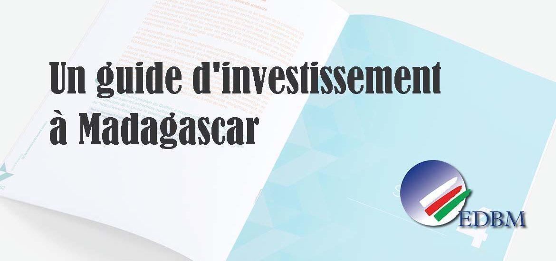 Un guide d'investissement à Madagascar publié en ligne