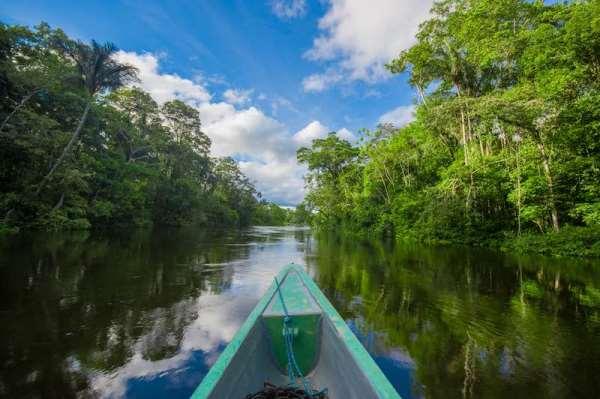 CBD COP 14 : Appel pour un nouveau pacte pour la nature