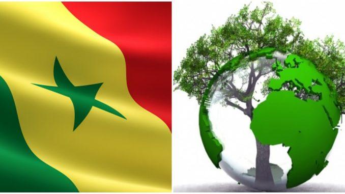 Le Sénégal s'oriente de plus en plus vers le tourisme durable.