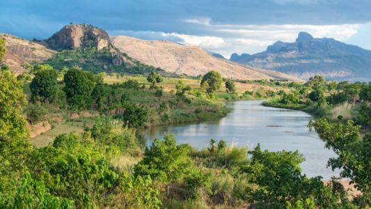 Environnement : Madagascar veut atteindre les 75 000 ha de surface à reboiser par an