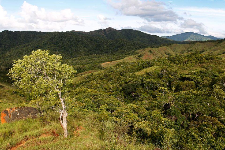 Aire protégée de Loky Manambato : La biodiversité du Nord-Est se découvre