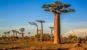 Comment Madagascar compte relancer son tourisme