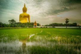 Thailande-565×318
