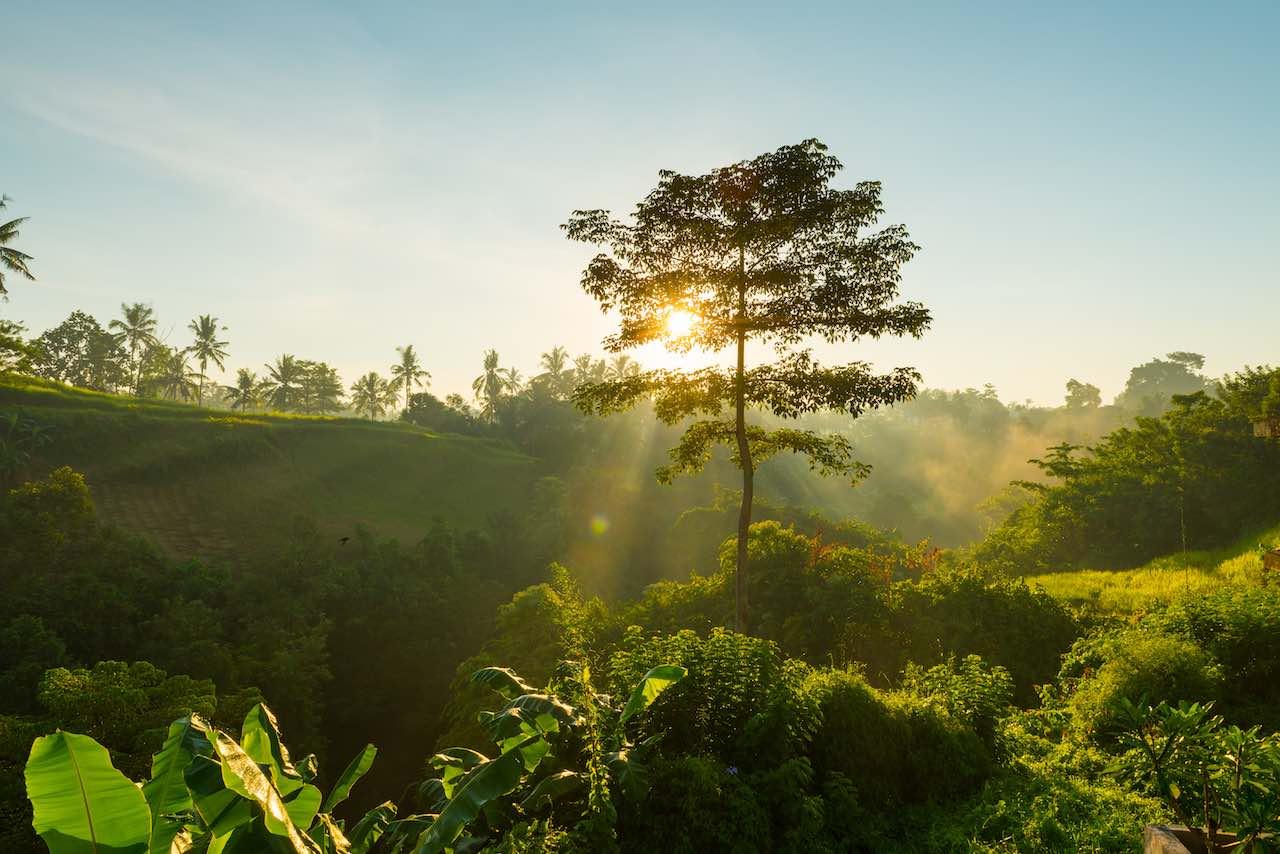 You are currently viewing Océan Indien : le tourisme durable comme moteur économique et rempart environnemental