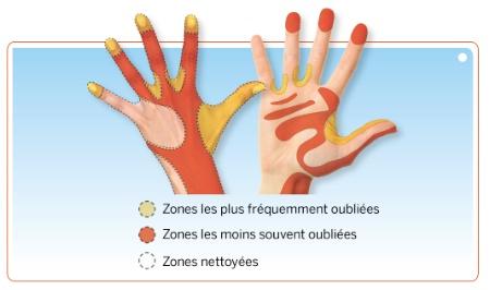 Hygiène en fiche pratique : le lavage des mains