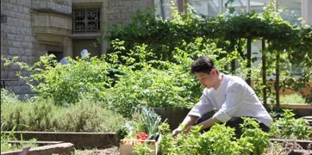 France. Institut Paul Bocuse : Etudier et vivre sur un campus éco-responsable