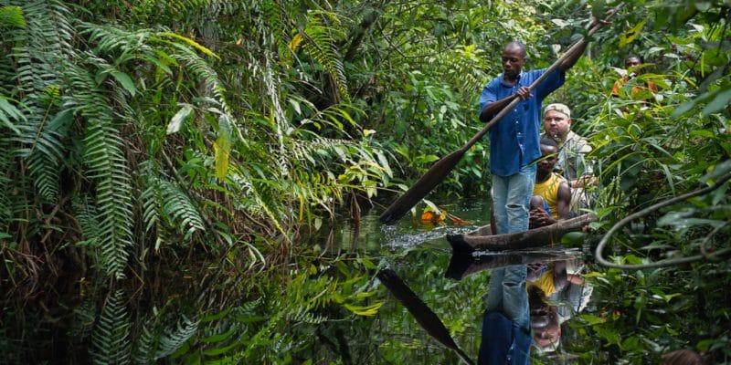 AFRIQUE : tourisme durable et biodiversité, un mariage de raison
