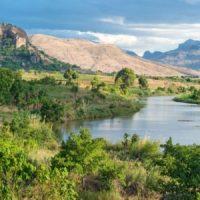 Madagascar-foret